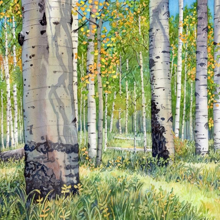"""""""Colorado Autumn"""" Watercolor by Lorraine Watry"""