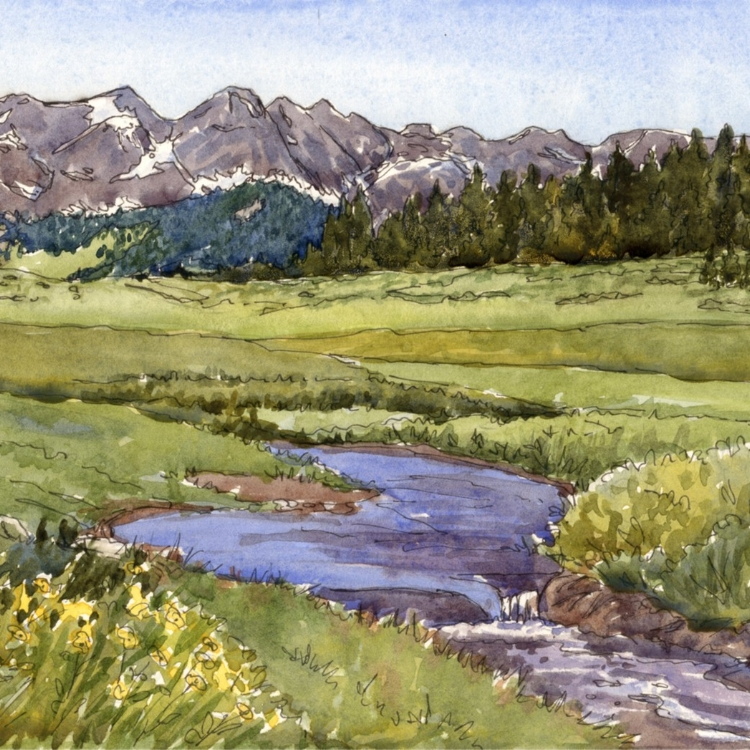 """""""Colorado's Wet Mountains"""" Watercolor and Ink by Lorraine Watry"""