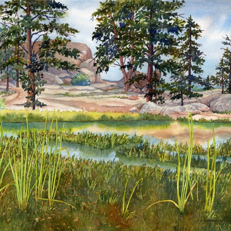 """""""Red Feather Lake"""" Watercolor by Lorraine Watry"""