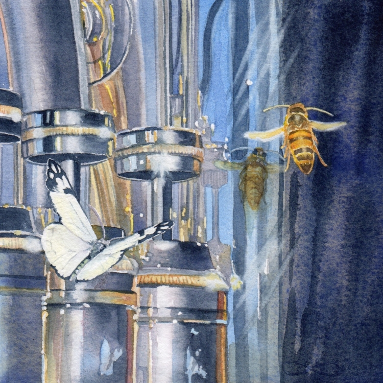 """NFS """"Day 16 Butterfly Bee and Baritone"""" watercolor by Lorraine Watry"""