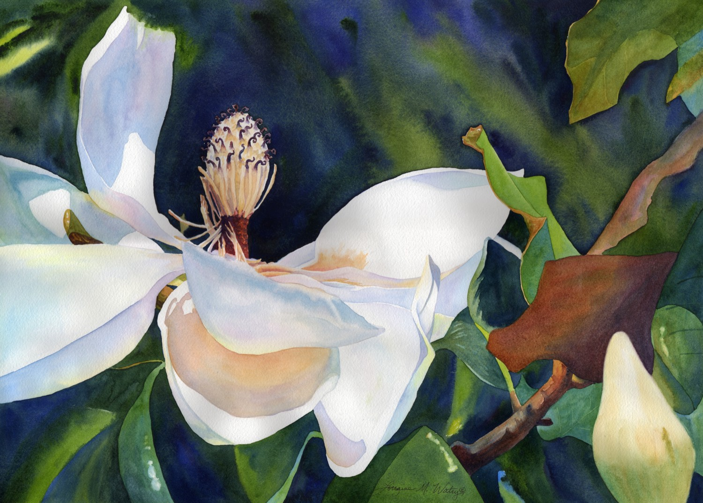 Magnolia's Last Hurrah © Lorraine Watry