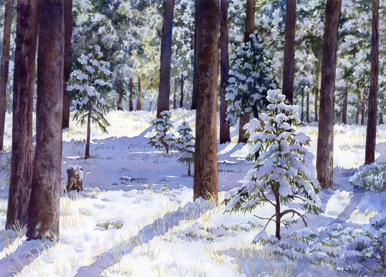 Black Forest Snow © Lorraine Watry