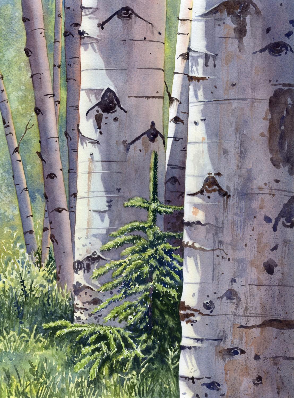 Nestled Among Aspen © Lorraine Watry