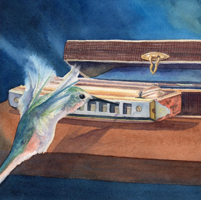 Harmonica Hummingbird © Lorraine Watry