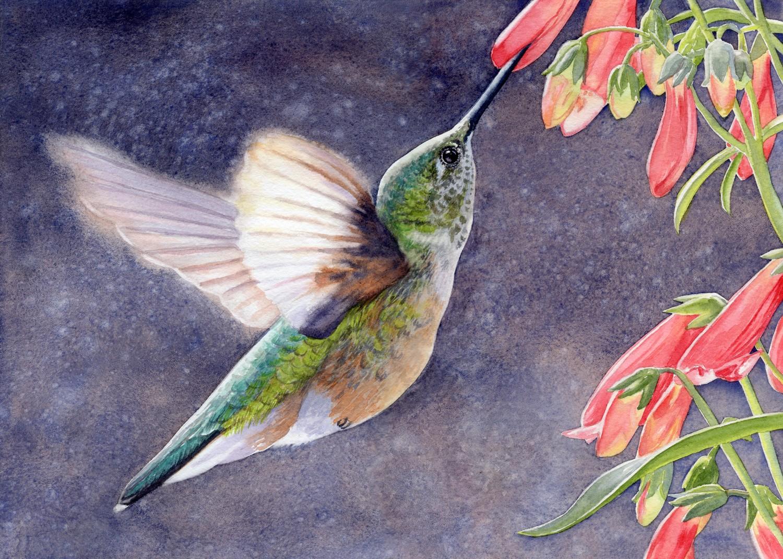 The Sweetest Nectar © Lorraine Watry
