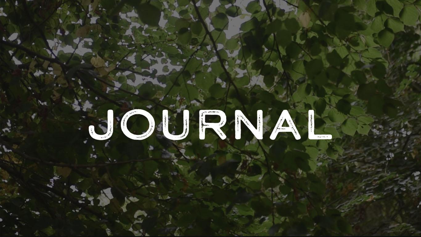 guy-siviour-journal