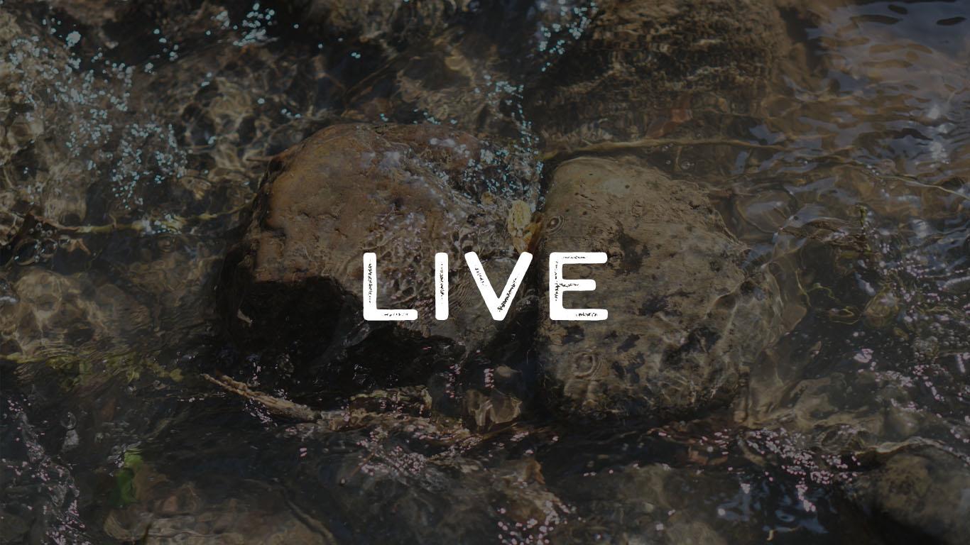 guy-siviour-live