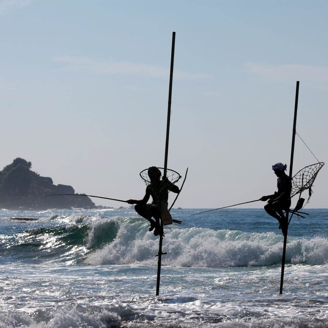 Safari, beach & history inSouthern Sri Lanka -