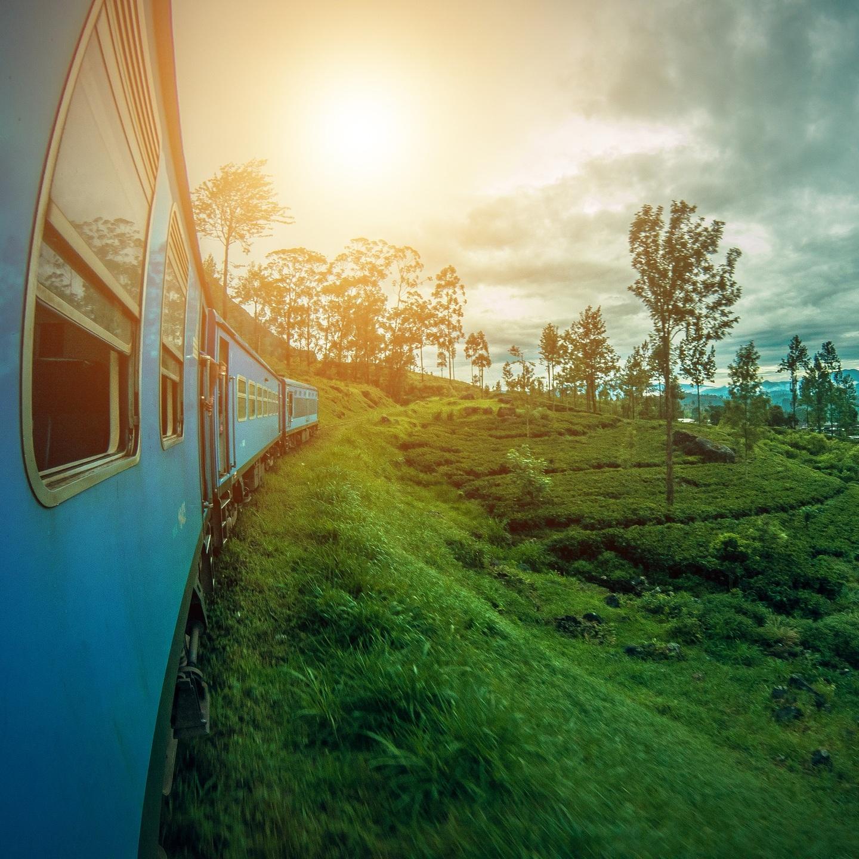 Sri Lanka Tea Plantations& Train -