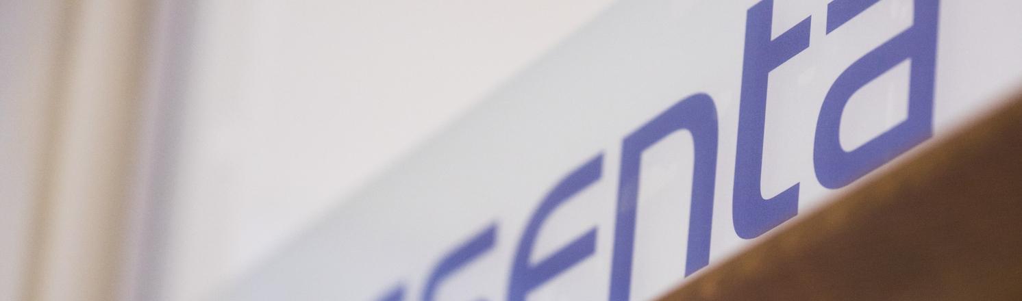 Nesenta logo