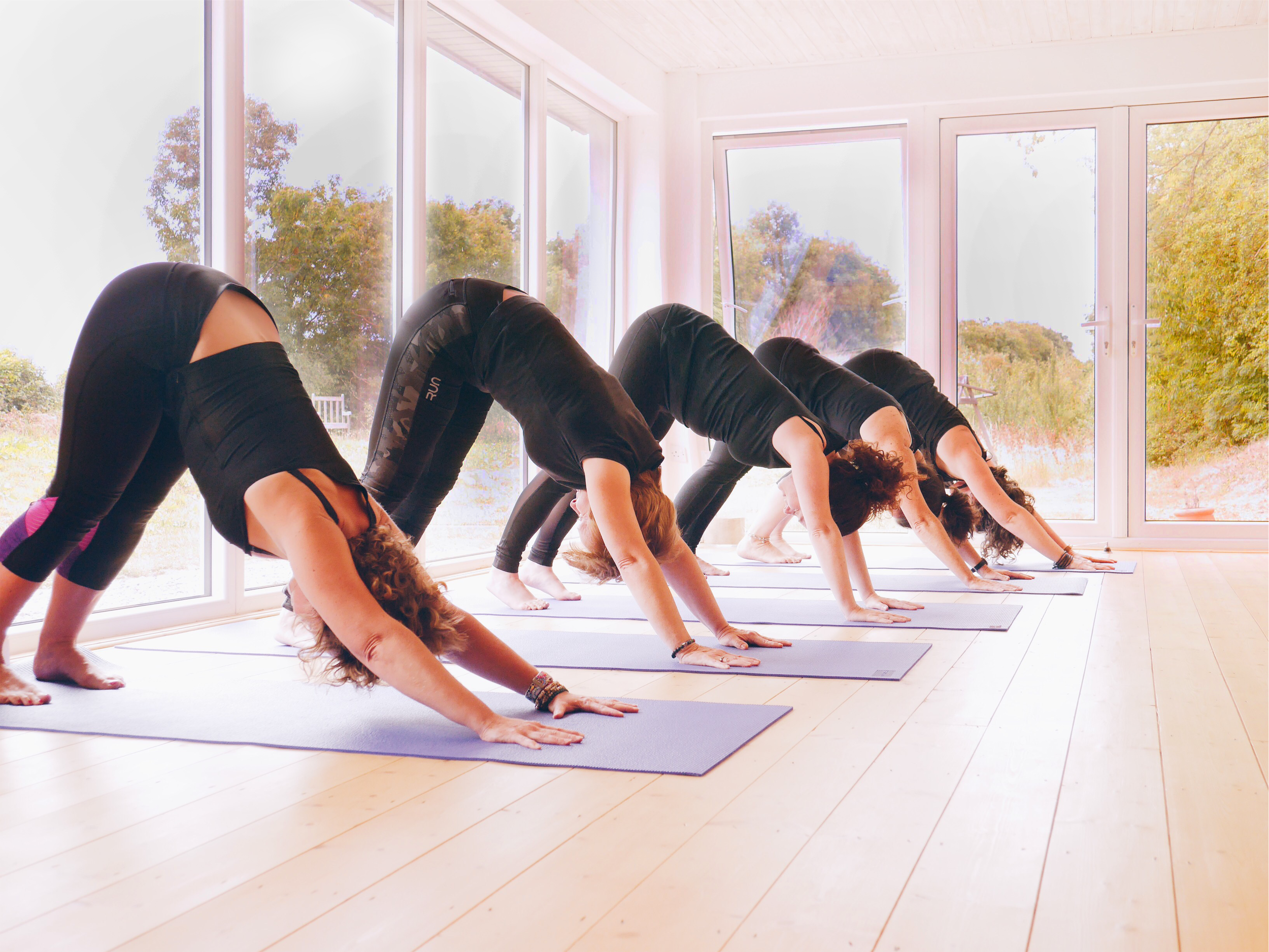 Aryna Yoga Weekly Classes for Beginners through to Advanced here in the Studio in Rathcoffey Maynooth
