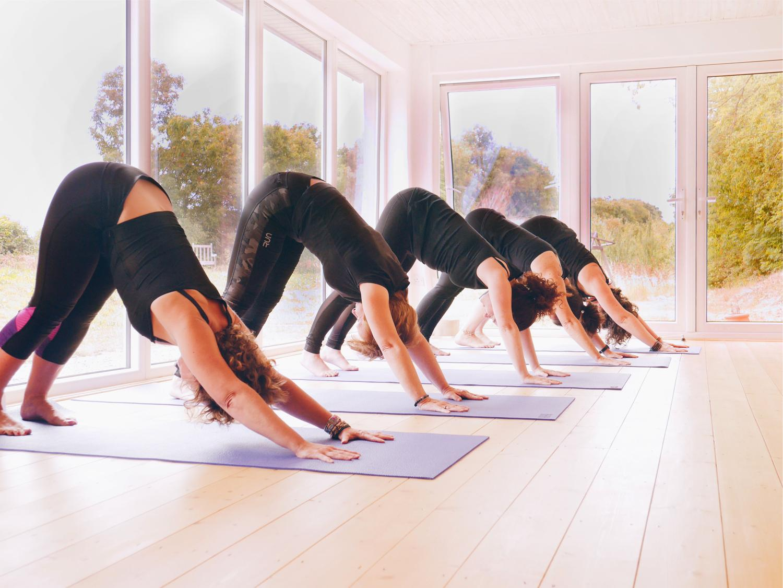 Aruna Yoga Rathcoffey weekly classes