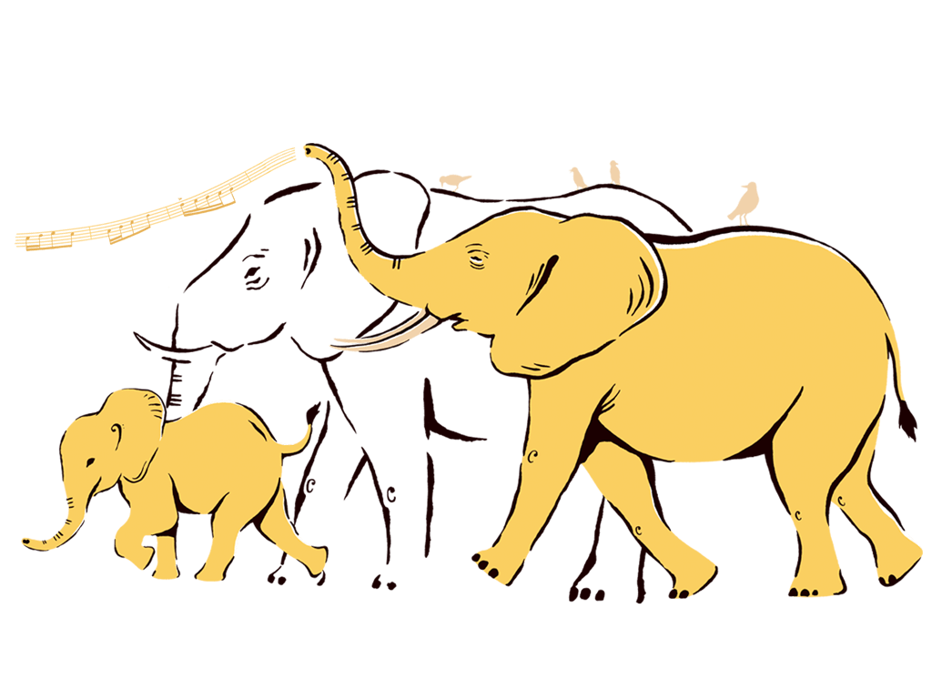 cranmore_case_study_elephants.png