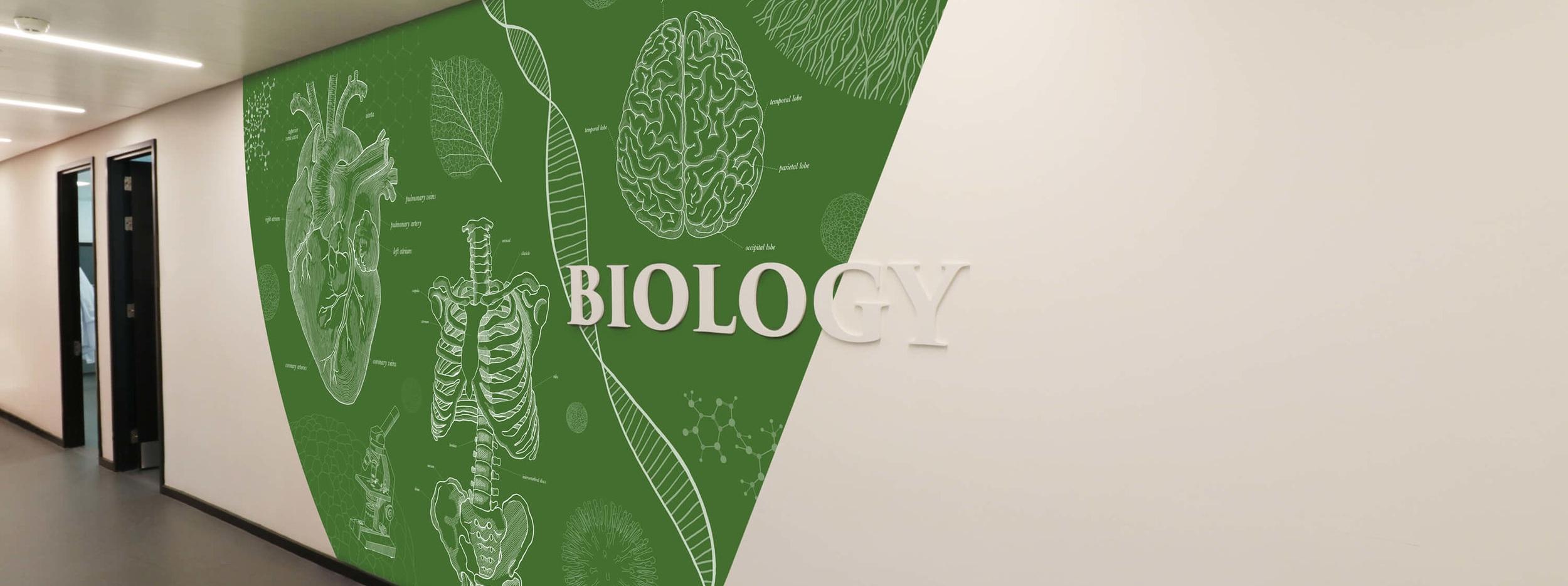 dld_college_london_blueprint_wonderwall_biology_banner.jpg