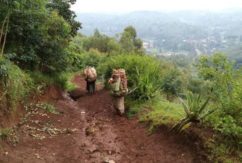 Région Est - Nord-Kivu et Sud-Kivu