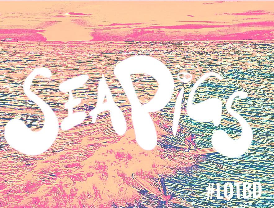 SeaPigs love Surfing