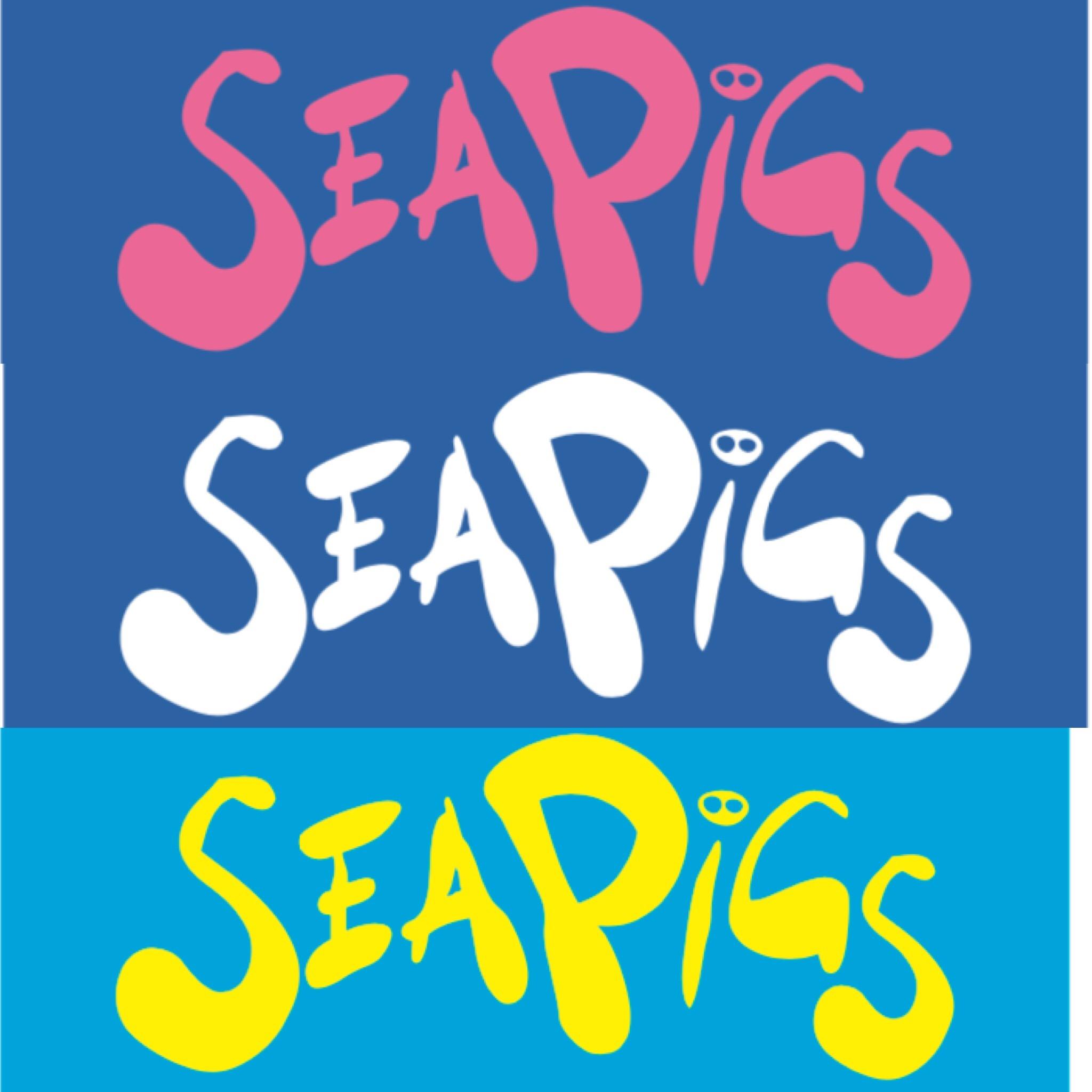SeaPigs logo colour choice - cocreation