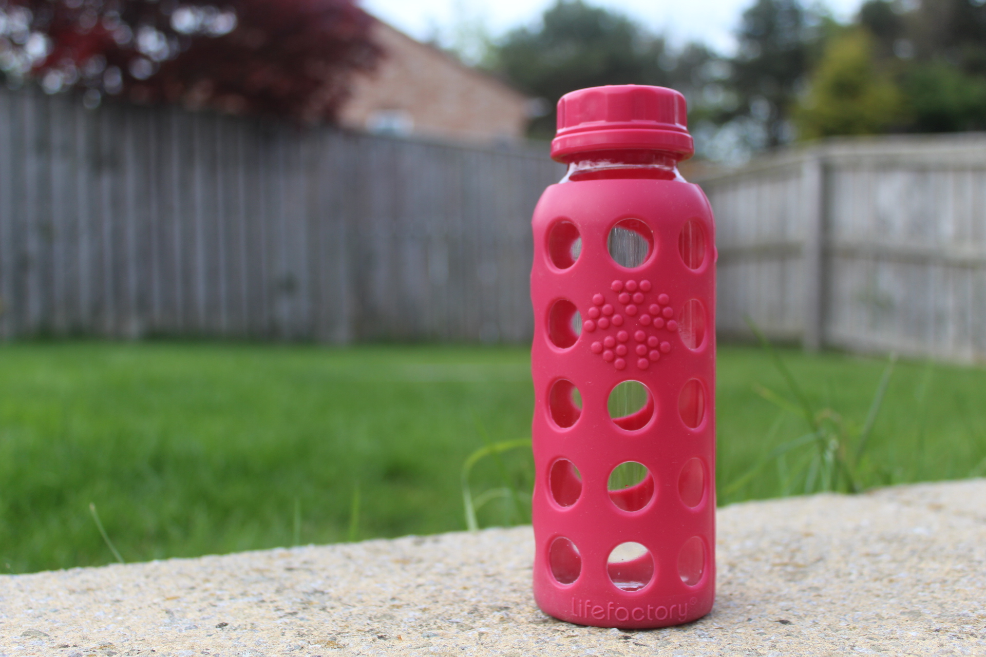 SeaPigs Bottles - the ultimate drinks companion - life factory water bottle - reviews