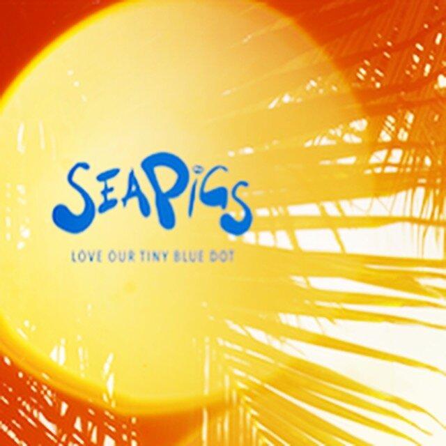 SeaPigs Sun