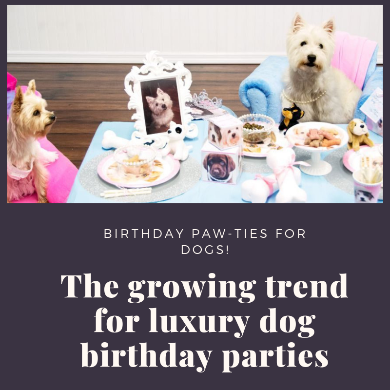 Dog Birthday parties.png