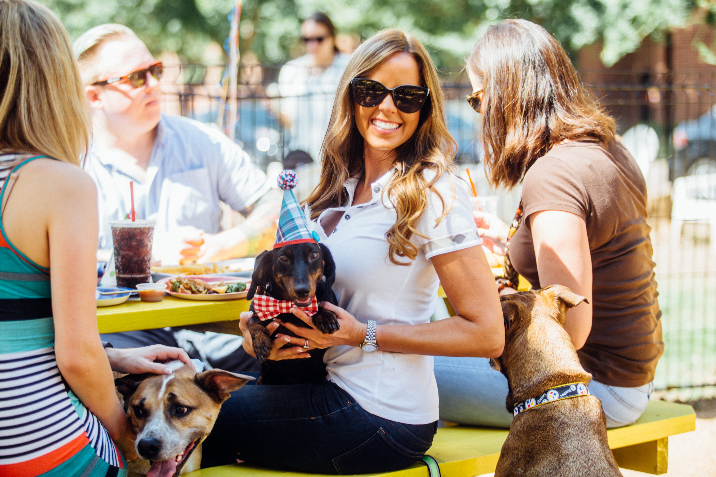 Millennials spend the most on their dogs including throwing lavish dog birthday parties!