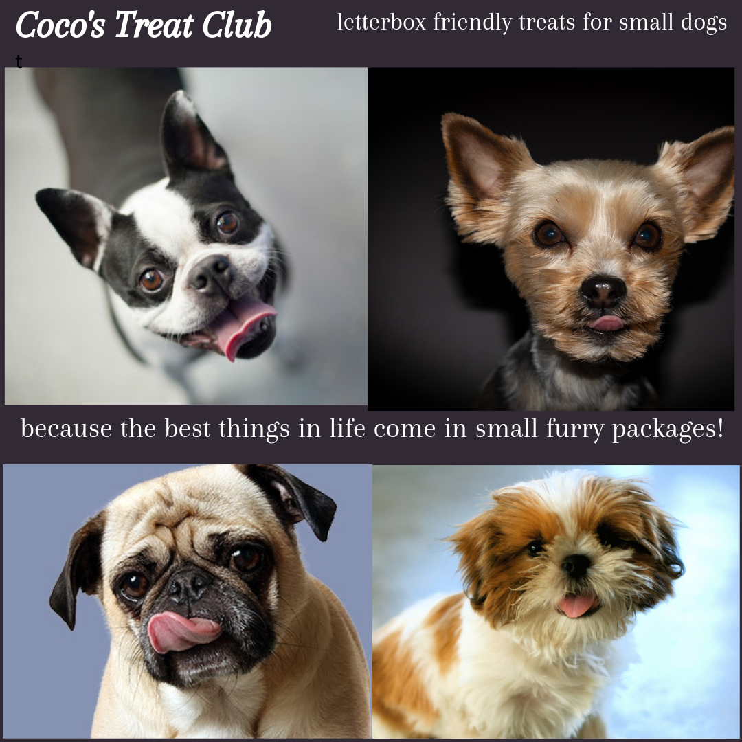 Cocos Treat Club because the best things come in small packages.png