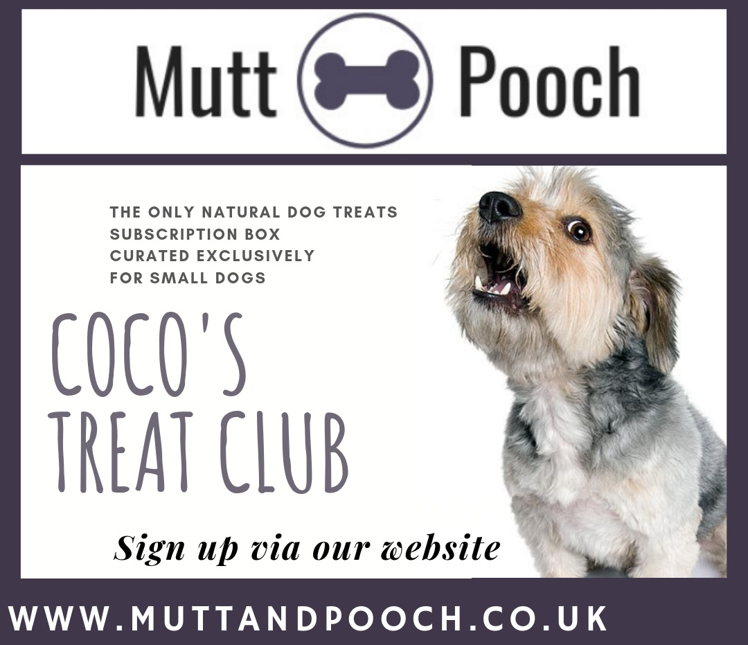 Each month your dog will receive a small box of letterbox friendly treats including a natural chew to help keep your dog's teeth and gums clean and healthy plus 2 or 3 other handmade healthy, natural dog treats sourced from small, British artisanal businesses. You will also receive a handmade dog grooming or doggie bathtime product!