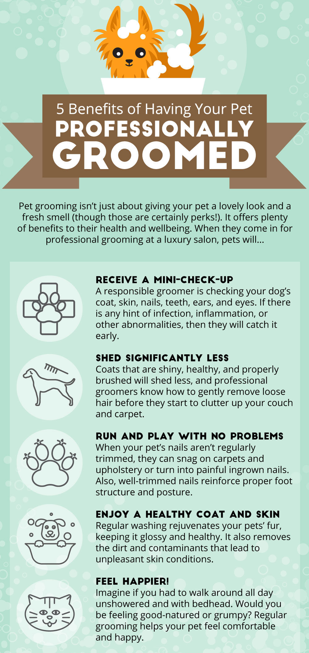The benefits of using a professional dog groomer