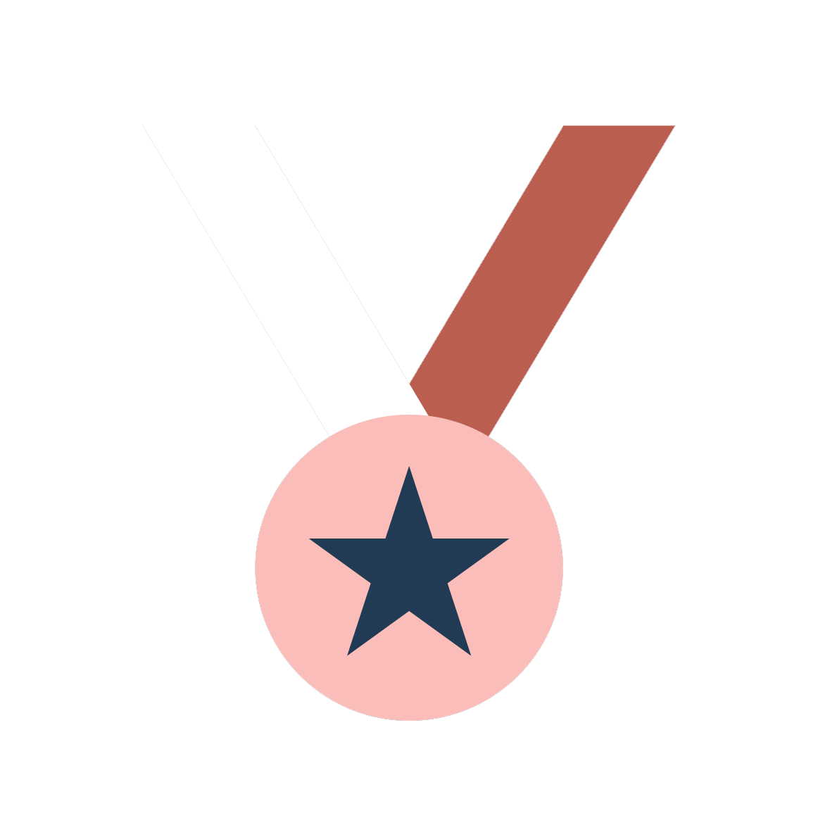 Icon_Navy_Medal_Transparent.png