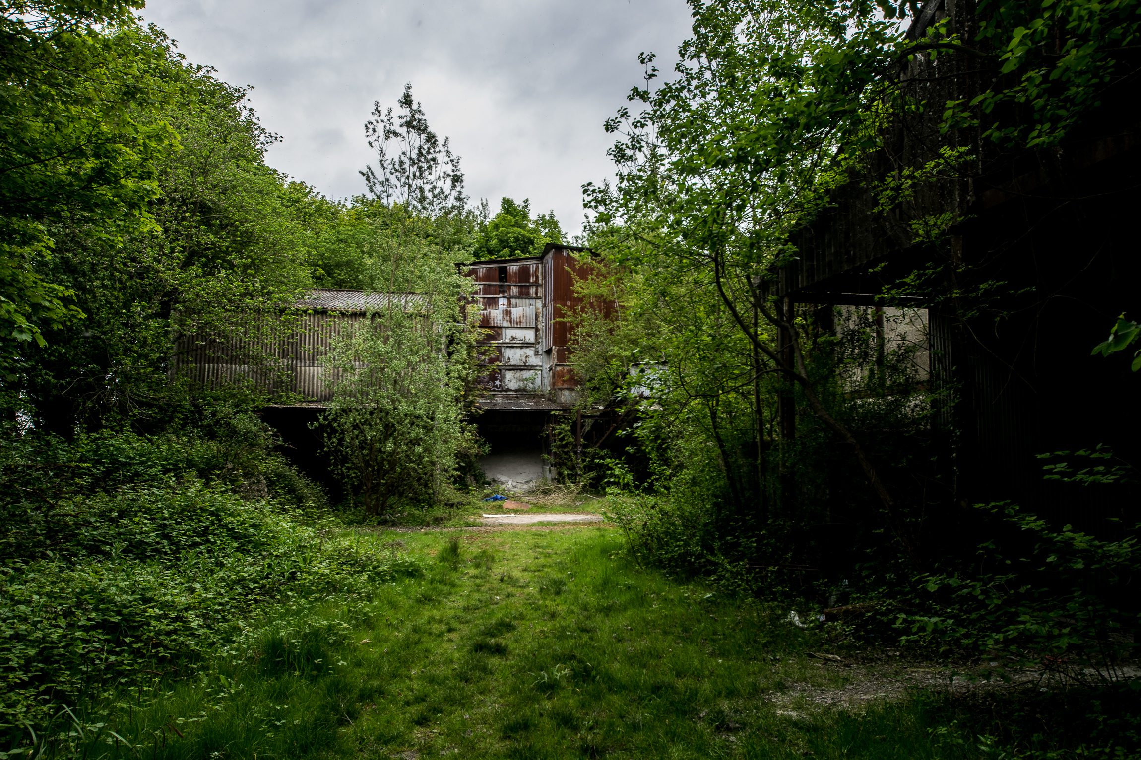 Derelict Lime Works - A very pictoresque place out in the middle of nowhere. I find wild growth and graf in combo very attractive