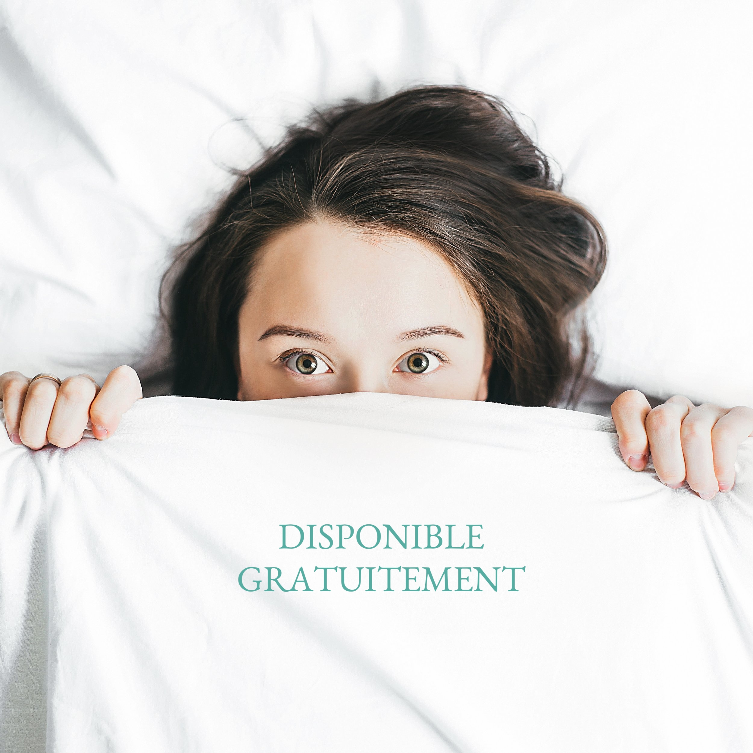 e-book gestion sommeil