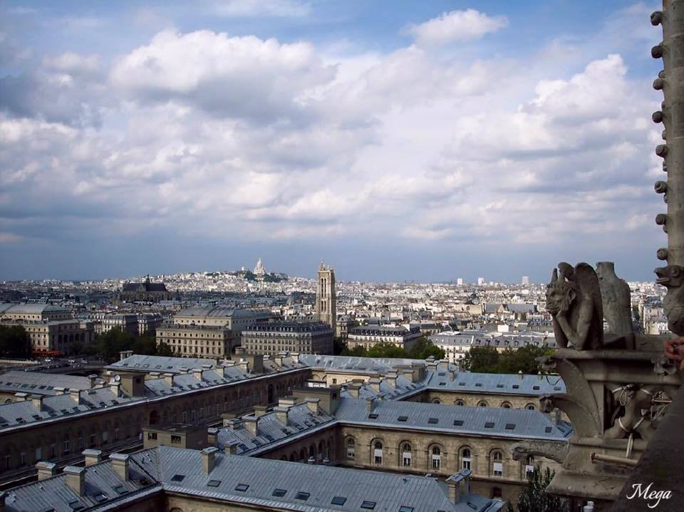 Notre Dame View 1.jpg