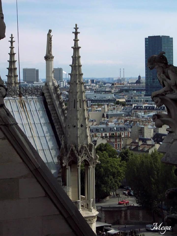 Notre Dame View 2.jpg