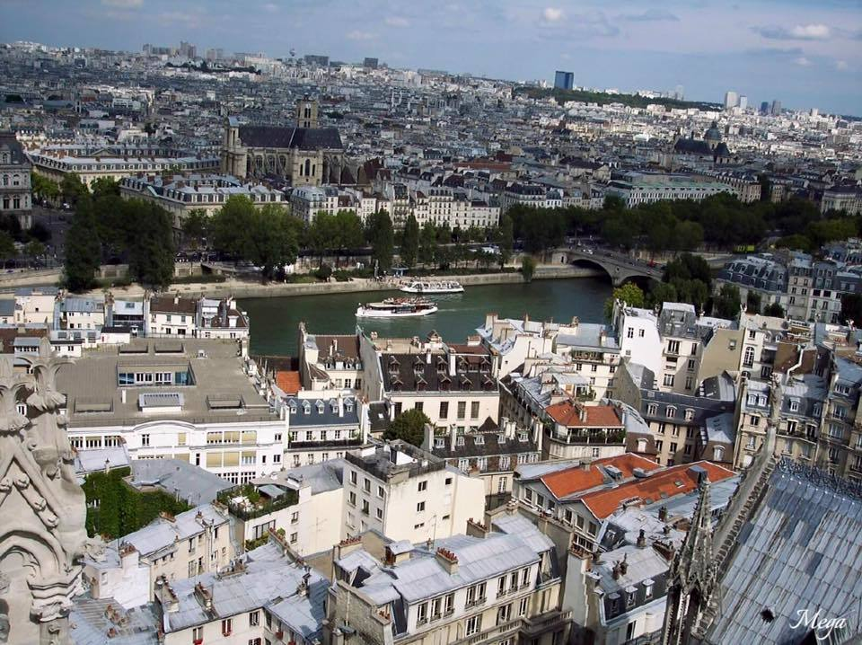 Notre Dame view 5.jpg