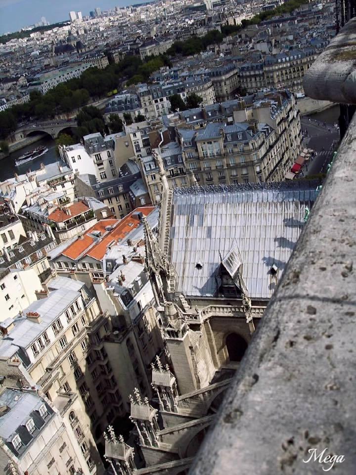 Notre Dame view 4.jpg