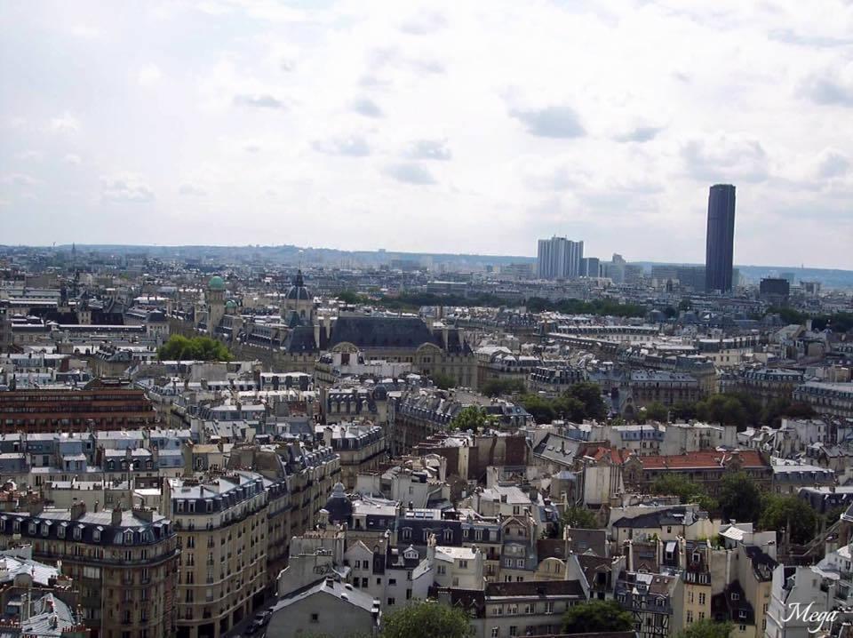 Notre Dame view 7.jpg