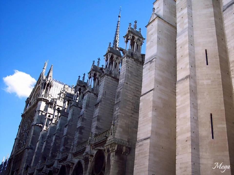 Notre Dame beauty 2.jpg