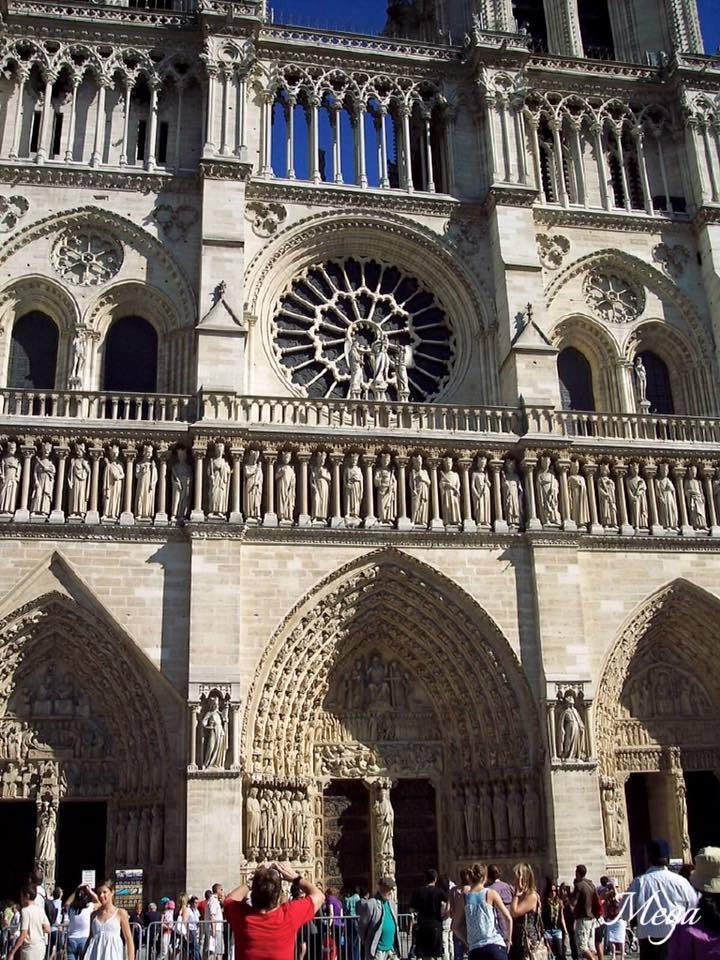 Notre Dame beauty 3.jpg