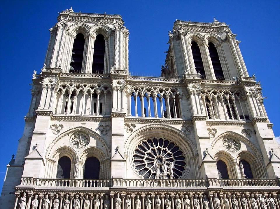 Notre Dame beauty 5.jpg