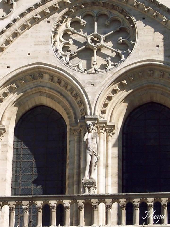 Notre Dame beauty 6.jpg