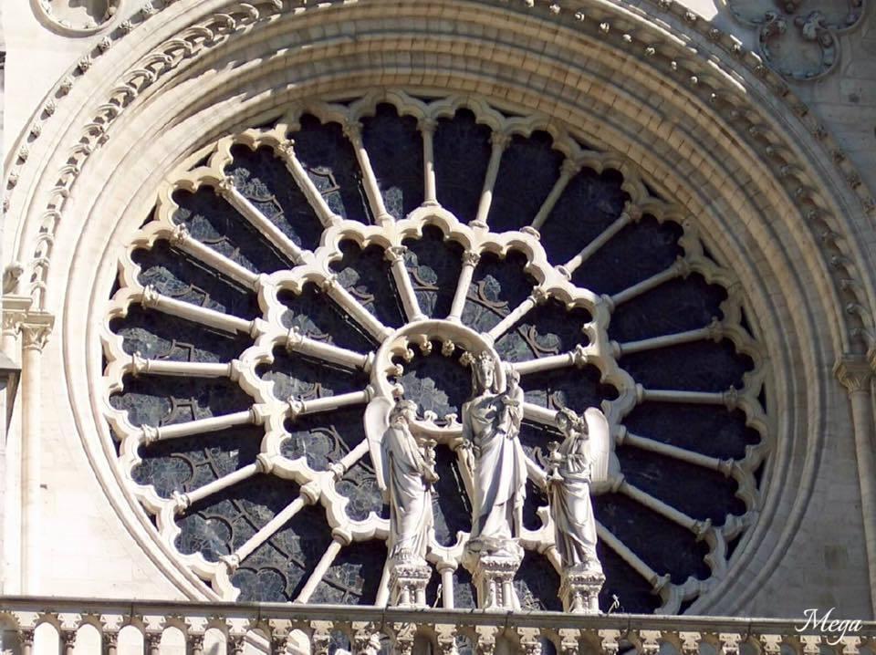 Notre Dame beauty 8.jpg
