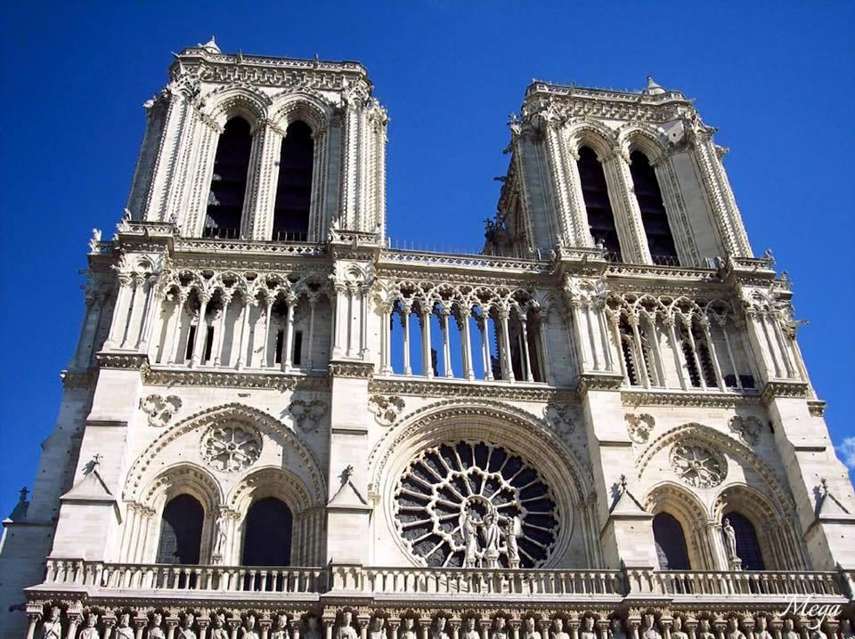 Notre Dame beauty 9.jpg