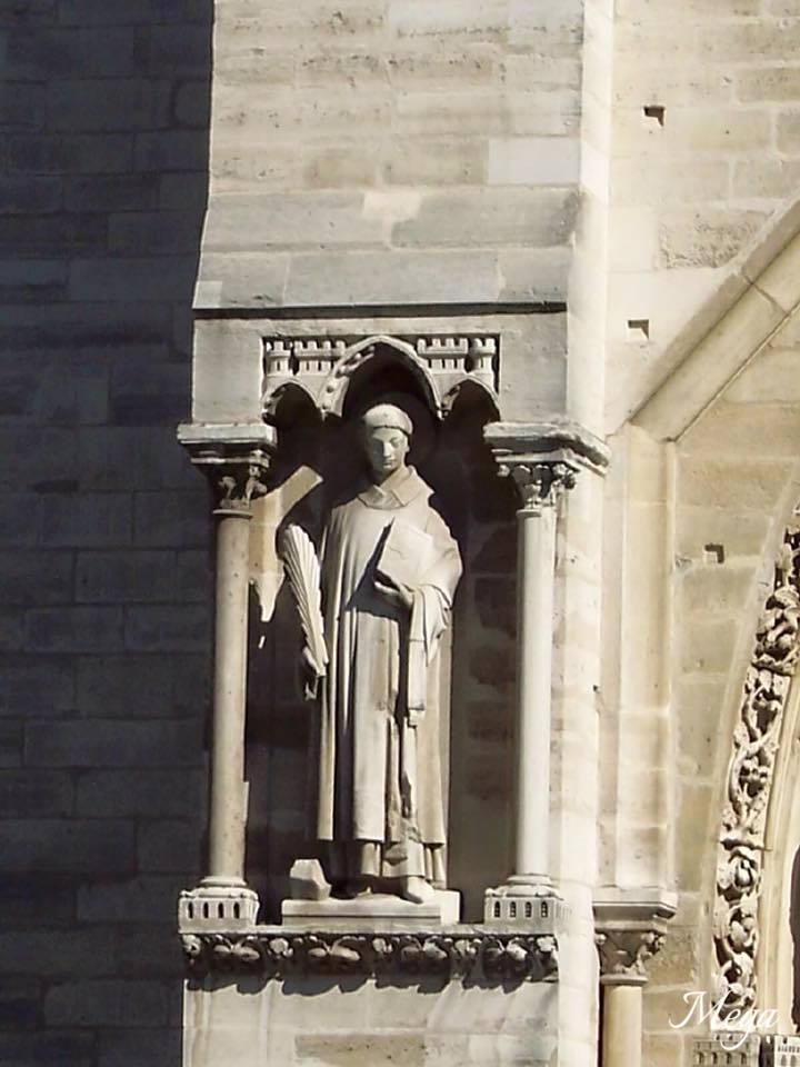 Notre Dame beauty 13.jpg