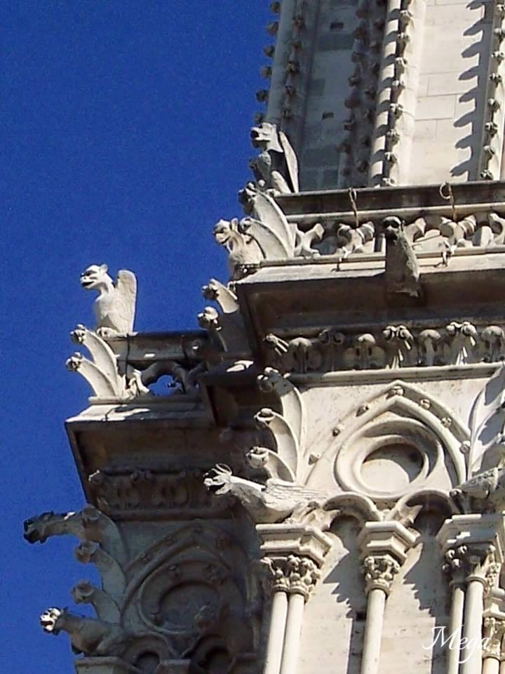 Notre Dame beauty 22.jpg