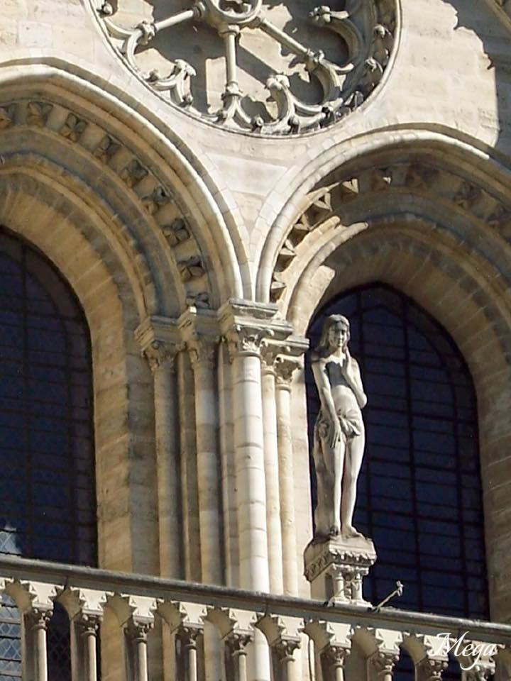 Notre Dame beauty 24.jpg