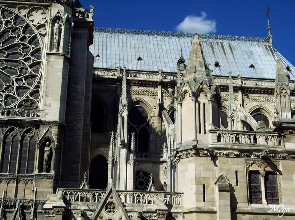 Notre Dame beauty 25.jpg