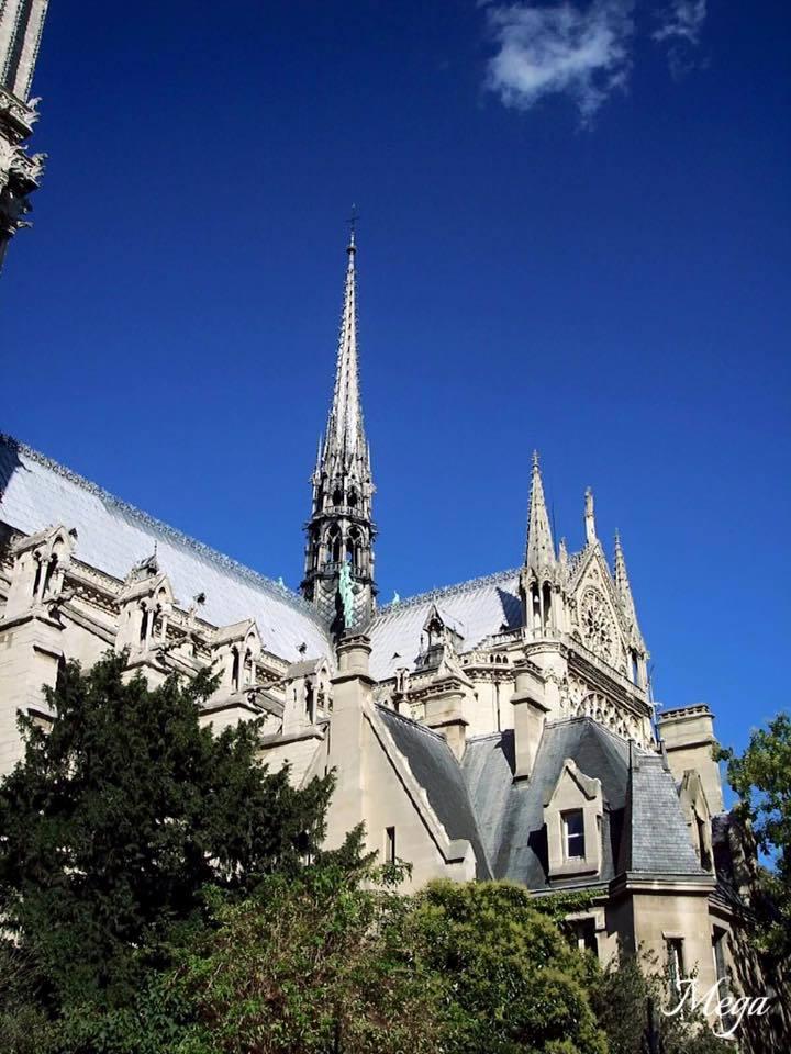Notre Dame beauty 27.jpg