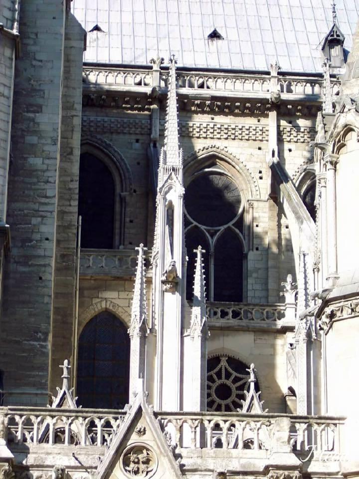 Notre Dame beauty 28.jpg