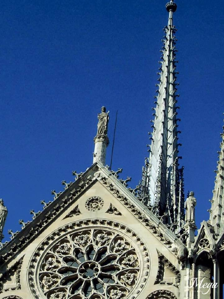 Notre Dame beauty 29.jpg