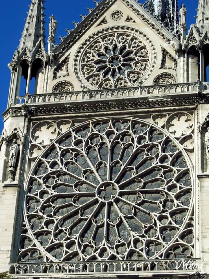 Notre Dame beauty 30.jpg